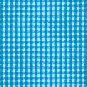 Turquoise  - Gingham 1/16