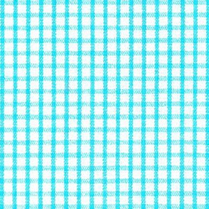 Windowpane - Aqua Windowpane Check
