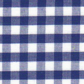 1/4 Gingham Nautical Check Fabric