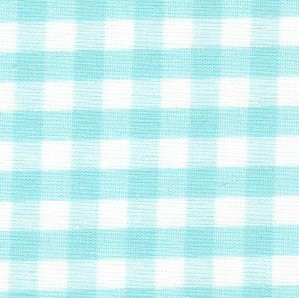 1/4 Gingham Seafoam Check Fabric